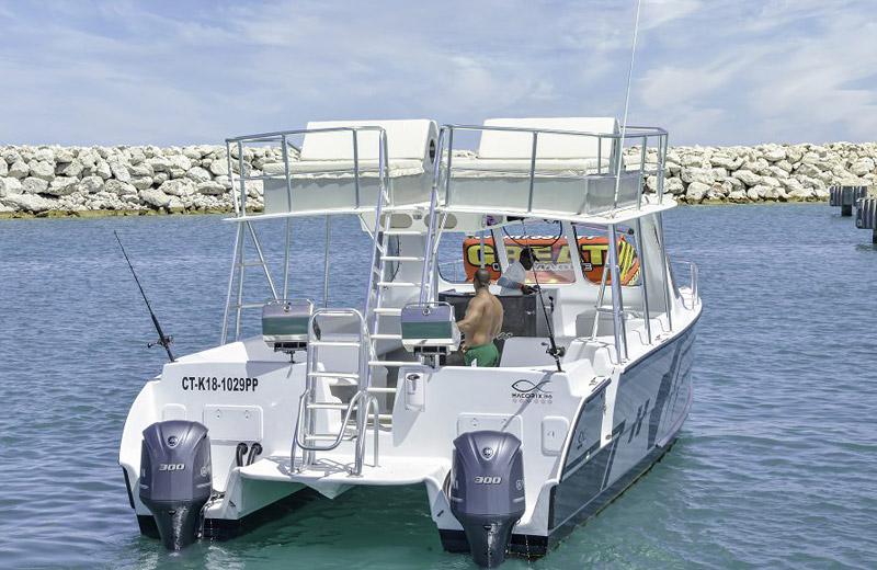 Private Chartered Catamaran